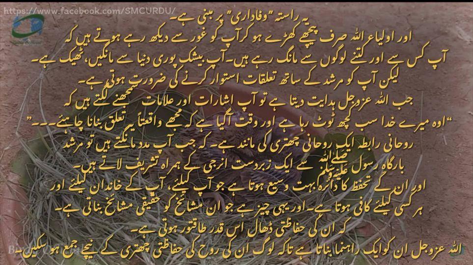 شیخ سید نورجان میراحمدی نقشبندی (ق) کی سنہری تعلیمات سے اقتباس-  بِسْمِ اللَّـهِ...