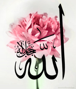 Allah in a Flower