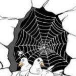 Cave of Thur - 2 doves and Spider web