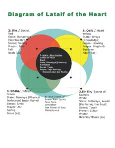 diagram of lataif of the heart-2012