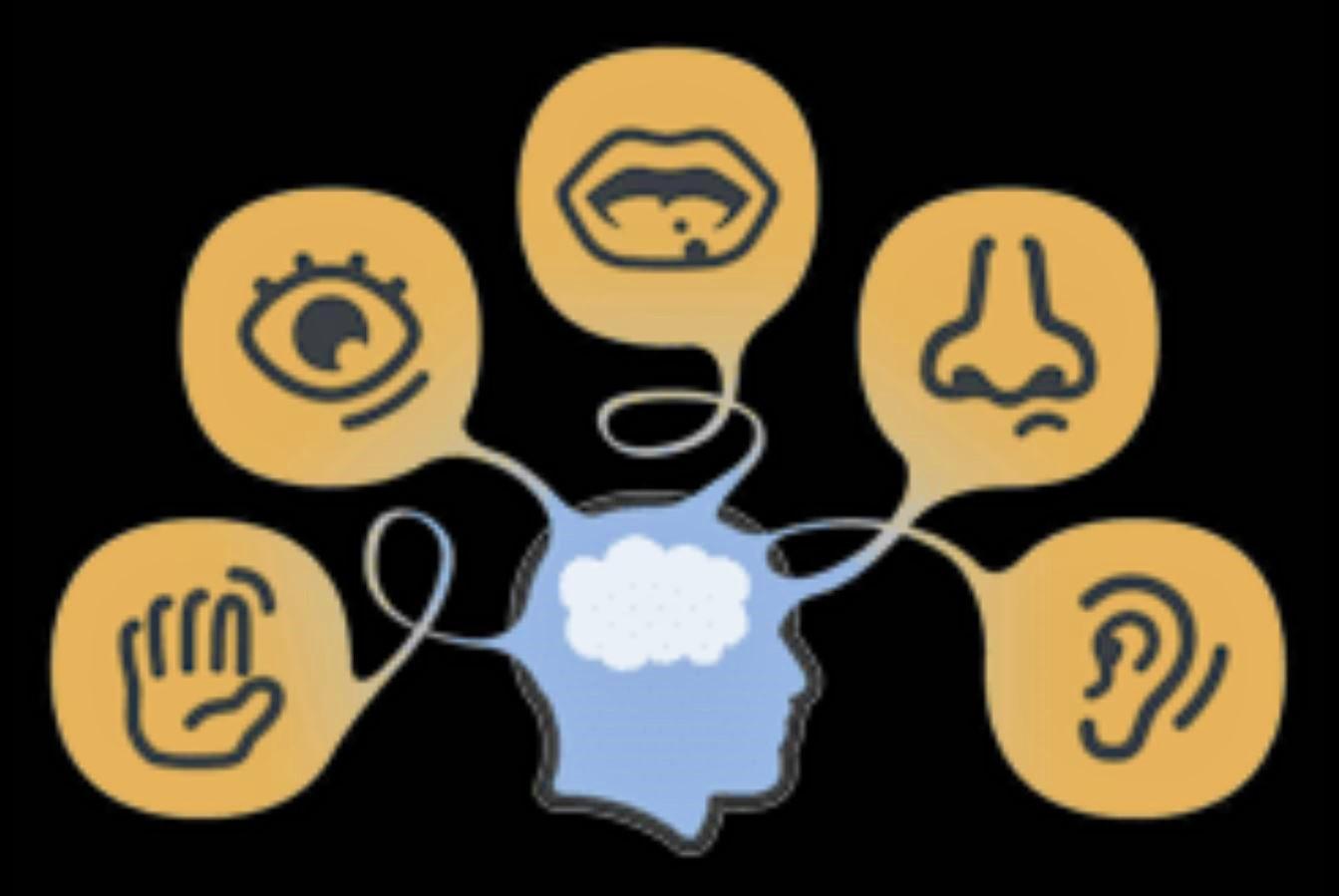 Five Senses Head