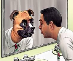 Man Reflecting Hyena Dog Abusive Soul