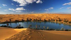 Oasis big lake in a desert - water, trees