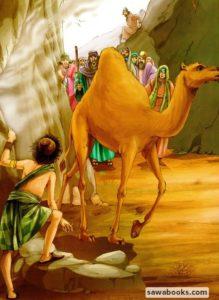 Prophet Saleh Camel Naqat Naqatullah Mountain