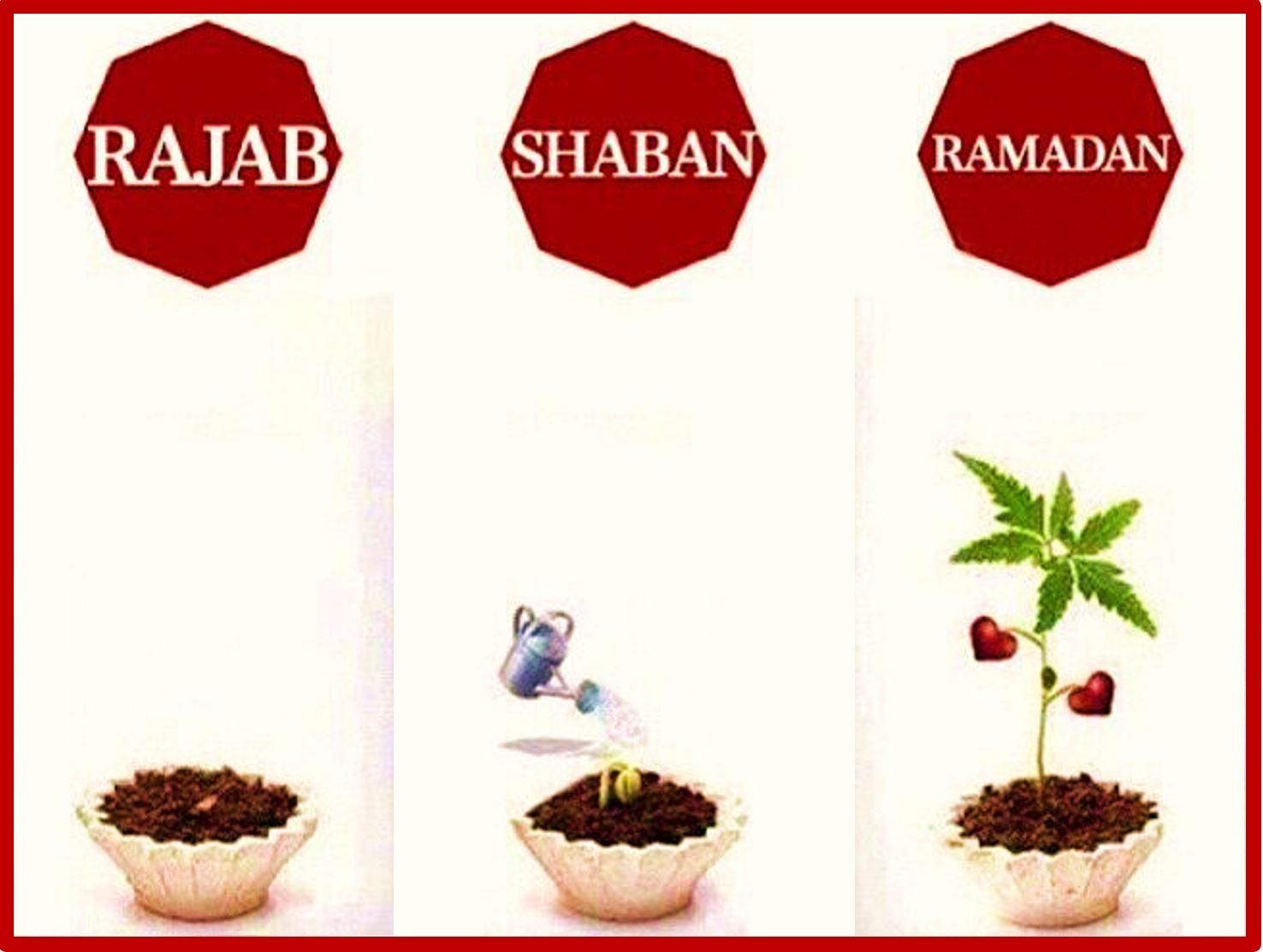 Rajab Shaban Ramadan Plant Seeds