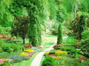 Spring in Green Garden