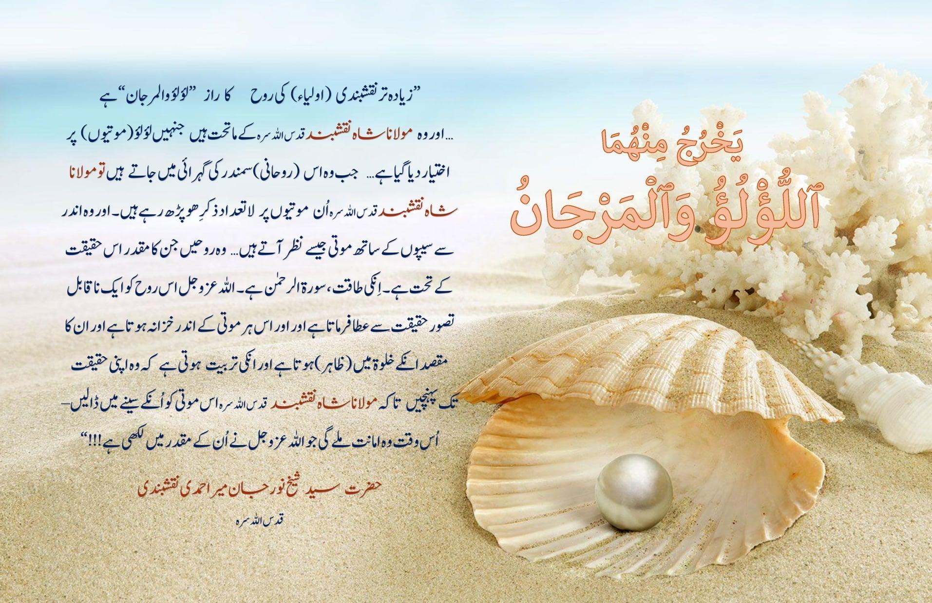 Mawlana Shah Naqshband (qs) zikr of HU هو on Lu'lu- wal-Marjaan –Everything is...