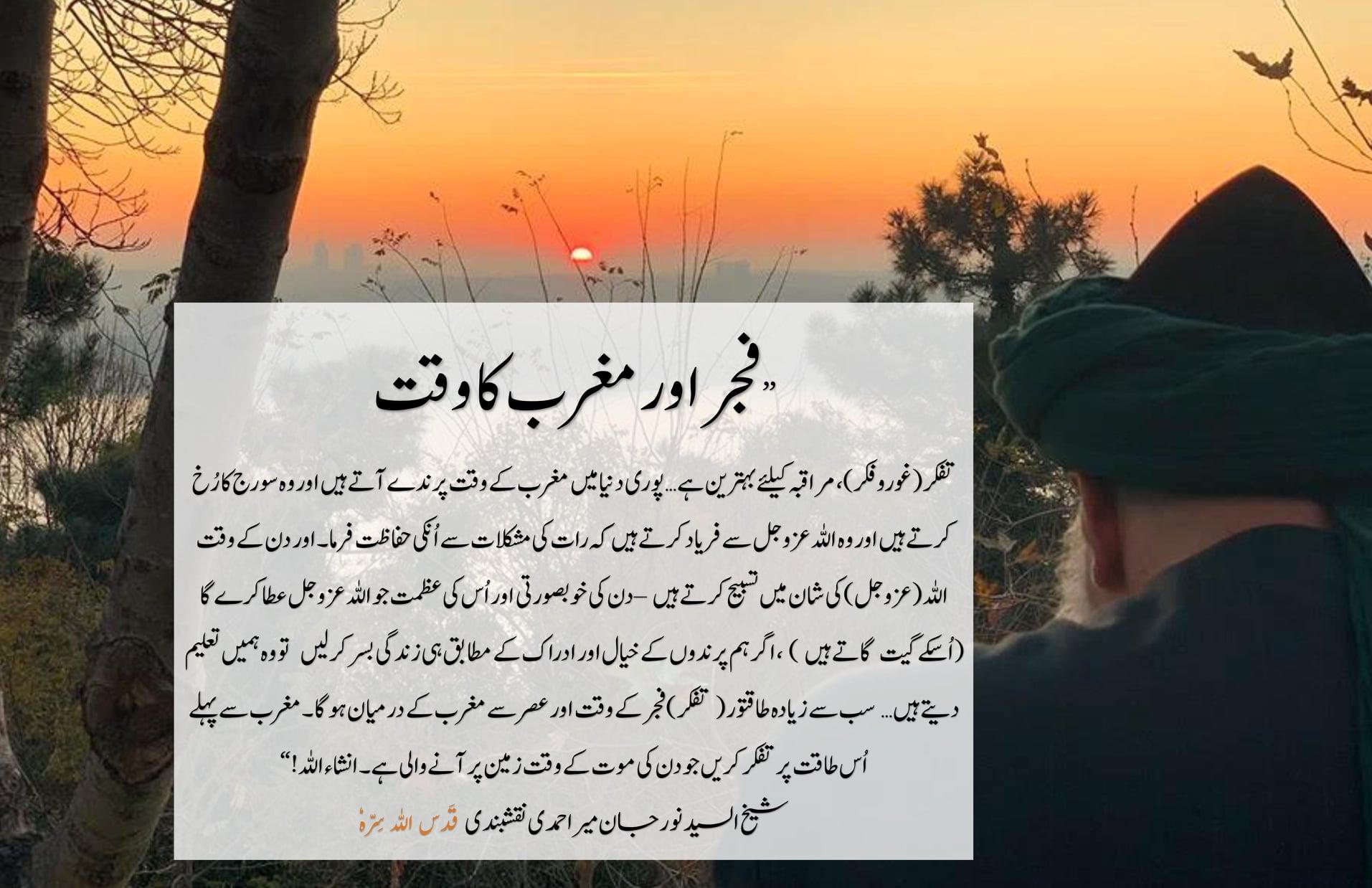 Q&A Session with Shaykh Sayed Nurjan qs   Q6: Sayidee, if I cannot make taffaku...