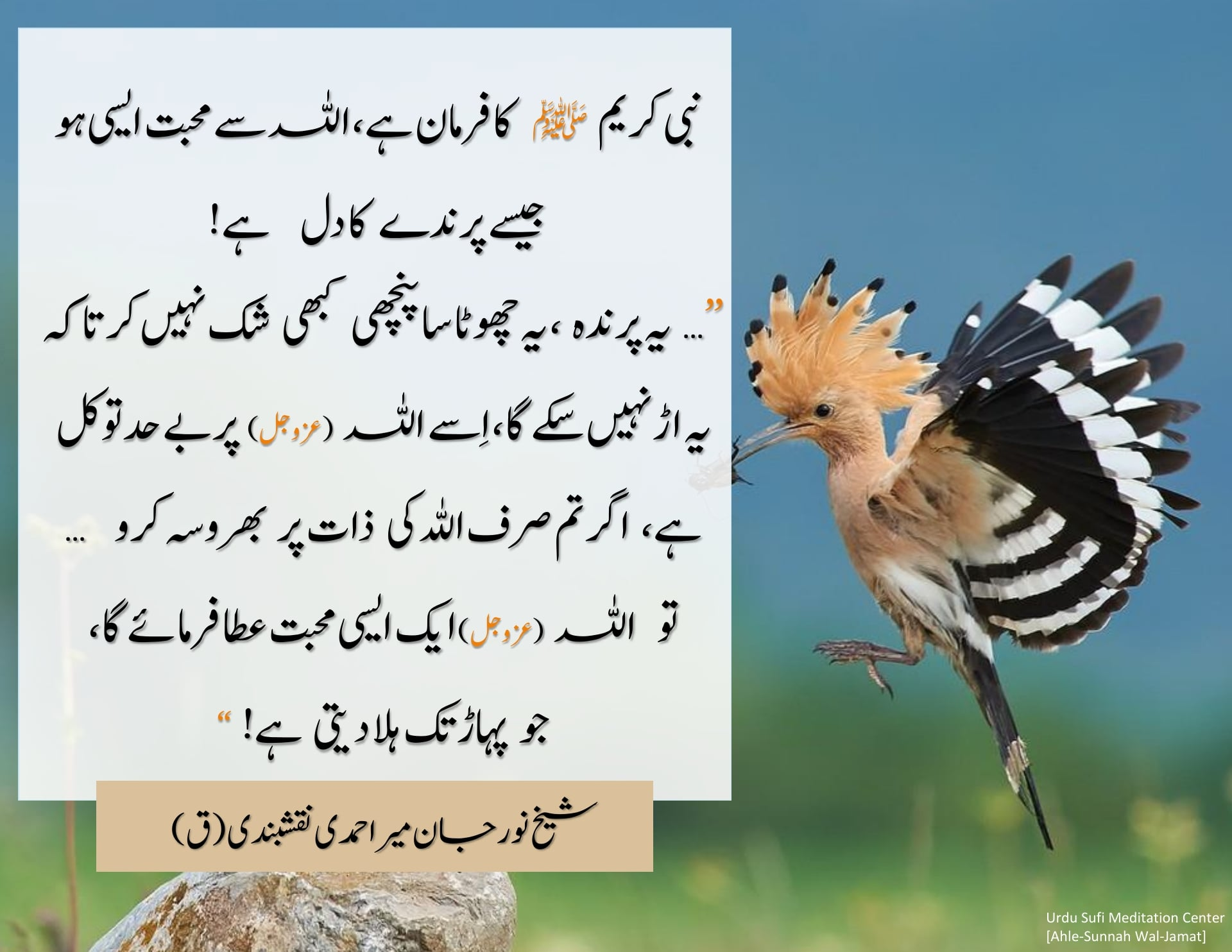 Tawakkul–  Make your Love like the Heart of the Bird    نبی کریم ﷺ نے صحابی  سے ...