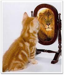 cat_mirrors_lion