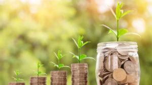 zakat, zakah, charity, creating wealth money bank, money plant growing, money increasing,