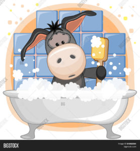 donkey in bathtub-taking bath-human body is like donkey