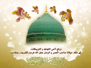Madina - Birds - Milad Rasul Azam