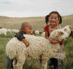 kids hugging sheep, qurban