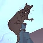 pestilence plague rat