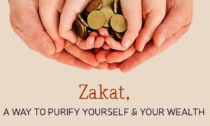 zakat family hands with coins
